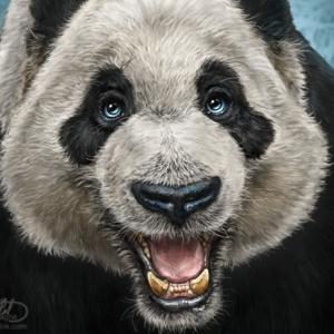 PandaFace