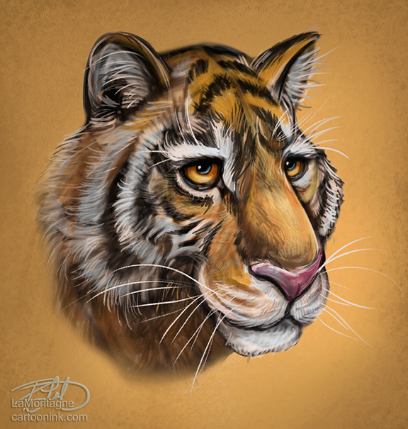 TigerSketch