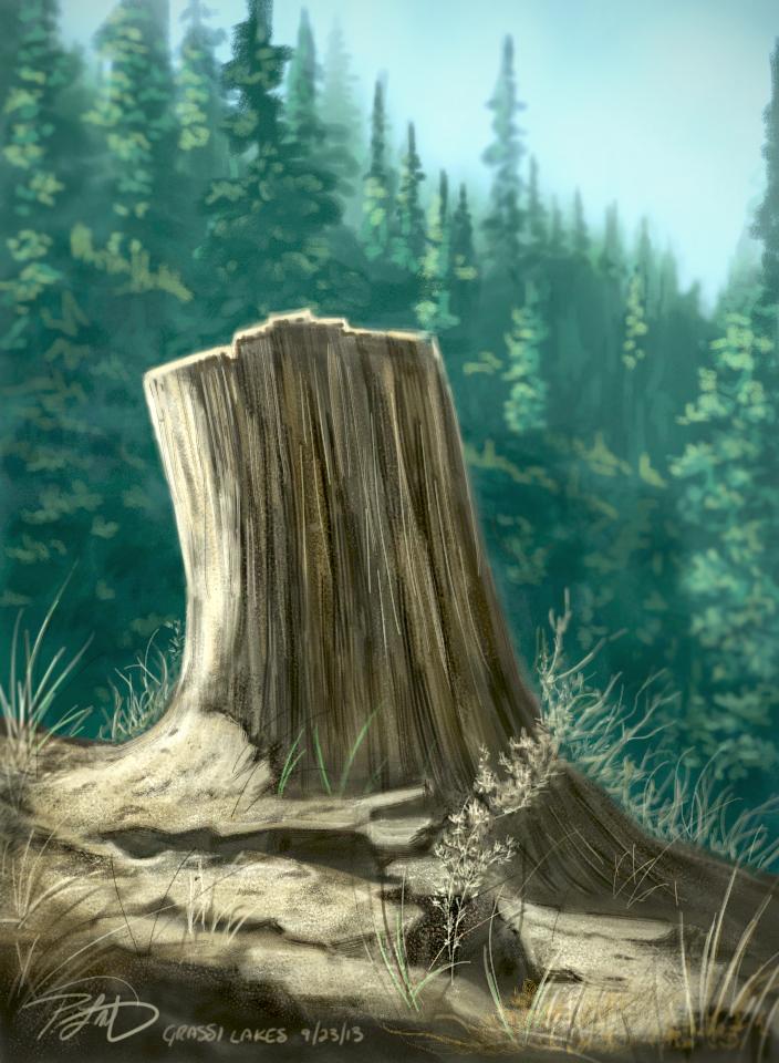 Stump01