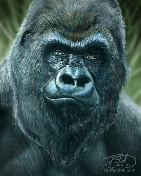 GorillaSketchFB