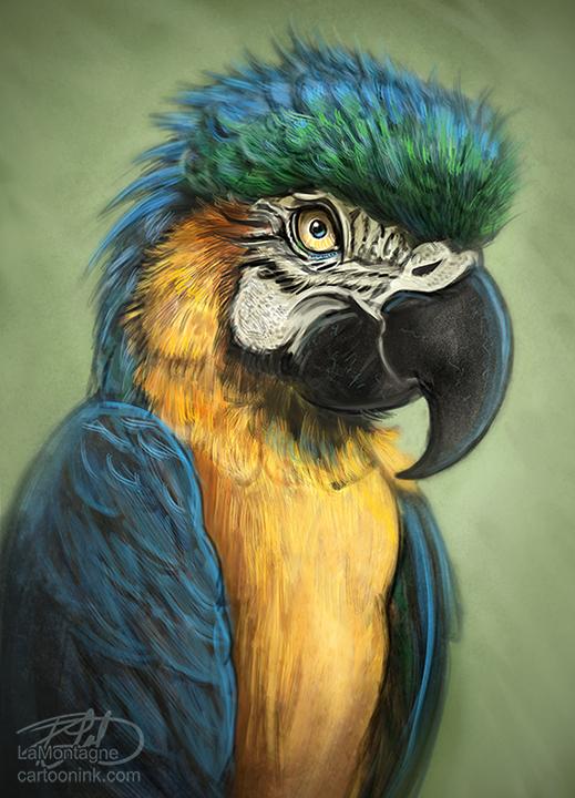 ParrotSketchFB