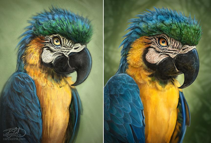 ParrotSketchfinish