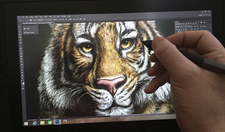 TigerCintiq13HD