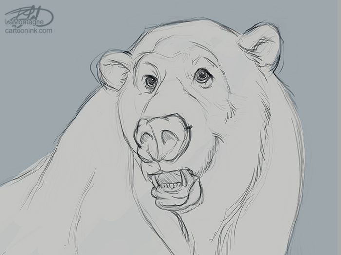 PolarBearSketch