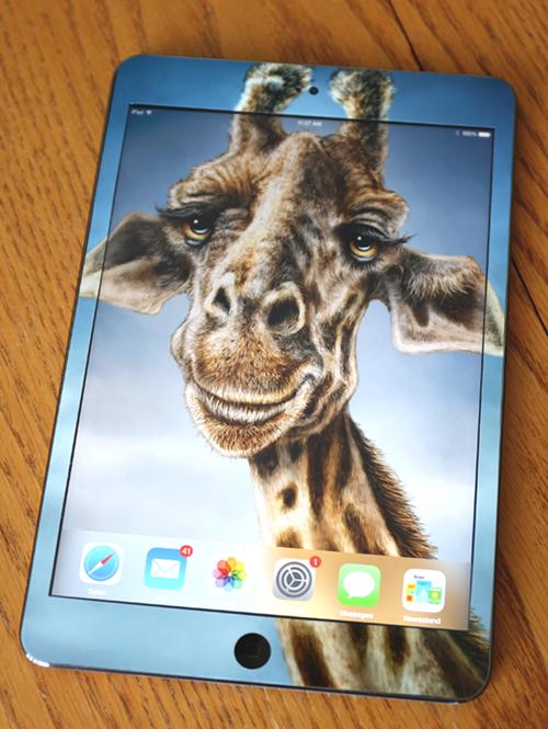 GiraffeiPad