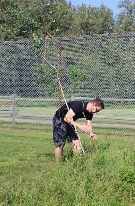 Planting01